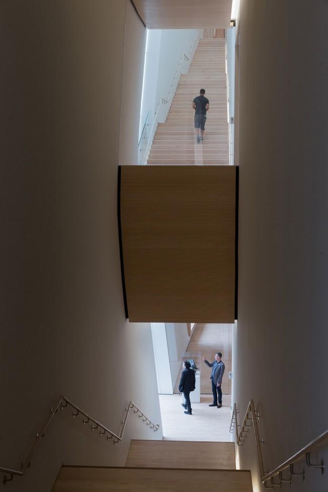 #每日毒评新建筑#——旧金山当代艺术博物馆-pic_014