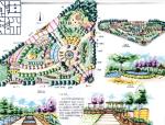 南京某林业大学风景园林历年考研真题及解析