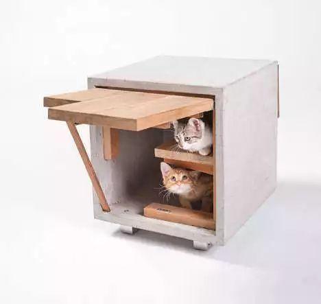 建筑师为动物们设计的建筑长什么样?_10