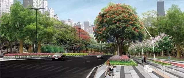 城市道路的植物配置设计原则-005.jpg