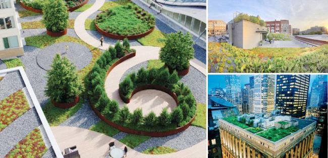 十大全球最棒的绿色屋顶设计