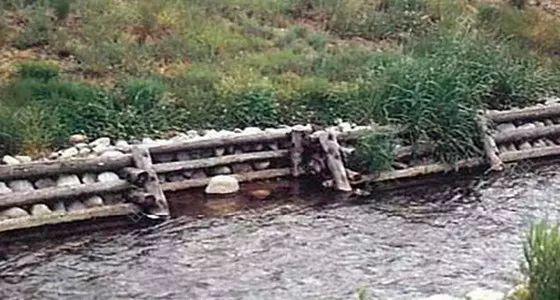 河道生态系统的恢复_3
