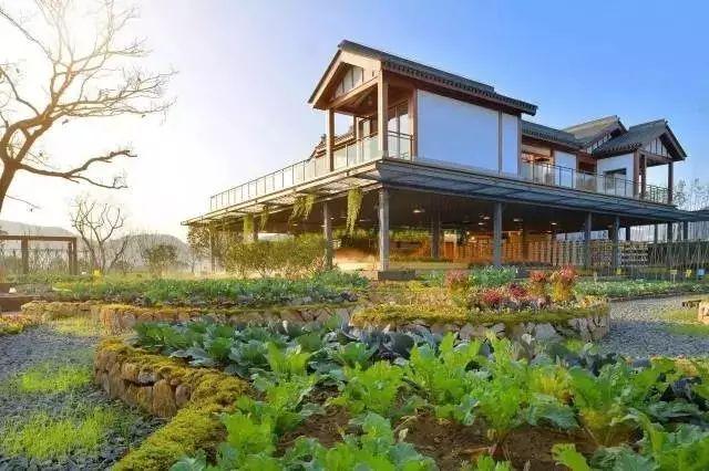 他建起这样一个农庄,将改变两三亿人的生活_1