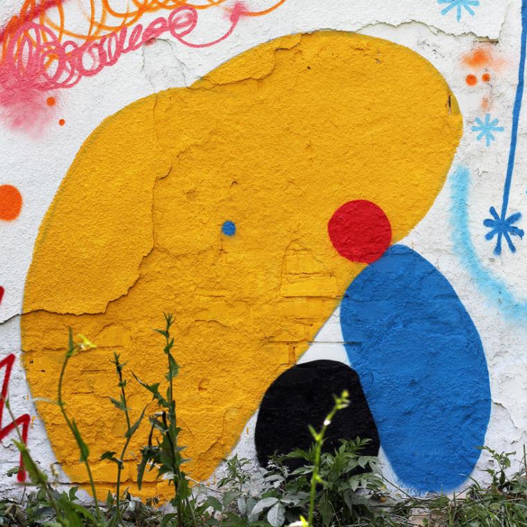 立陶宛房屋外墙上涂鸦景观-5