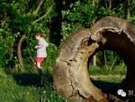 设施简单,却比多数游乐园都好的小生态园