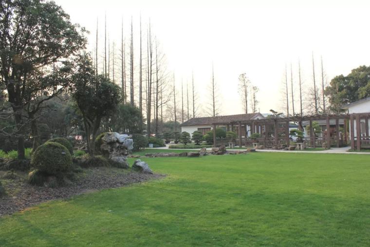 西安首届植物造景与生态发展论坛倒计时……
