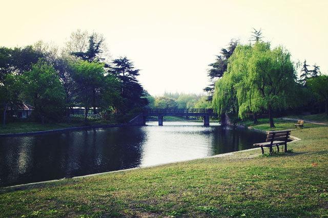 8-上海共青国家森林公园景观设计第8张图片
