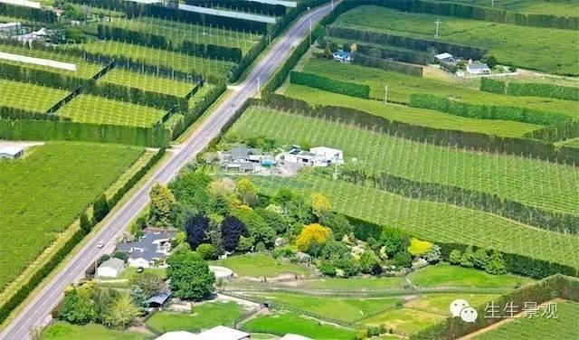 农业景观的意义_74