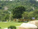 成都绿化工程公司绿化工程施工过程