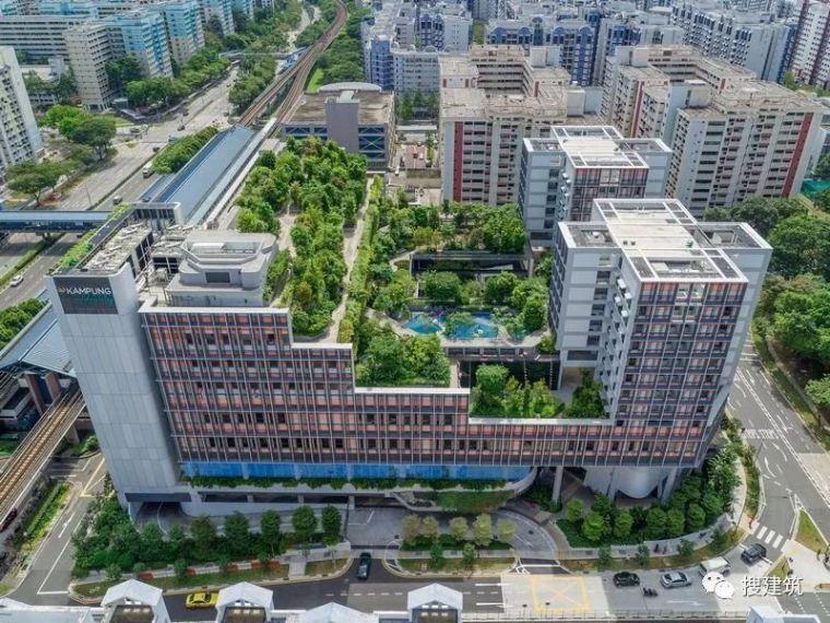 屋顶绿化案例——新加坡的公寓