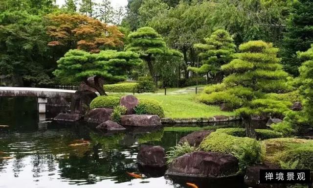 禅境景观   松是庭院木之王