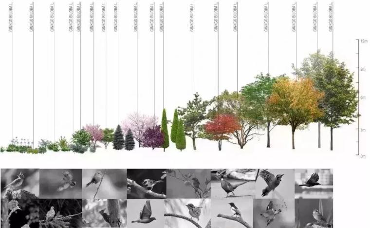 深度解读|四大植物空间设计哲学_31