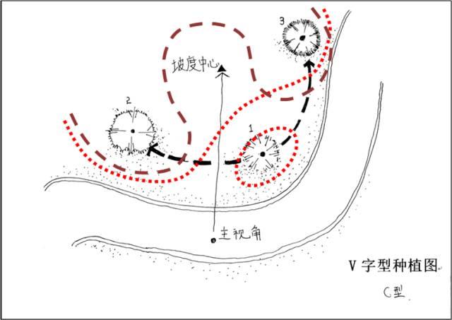 景观植物配置葵花宝典_70