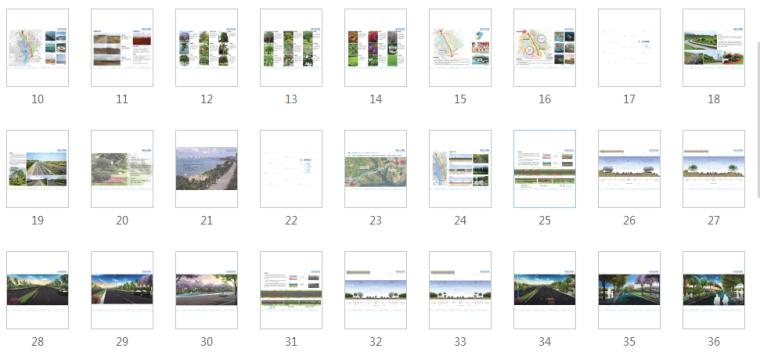 [广东]湛江海东快线概念景观设计(PDF+55页)-缩略图