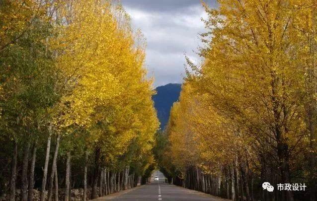 论公路沿线的景观规划与实施  2018-01-10 橙子 市政设计