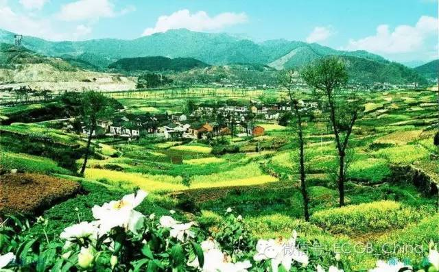 理想的生态村落-004.jpg