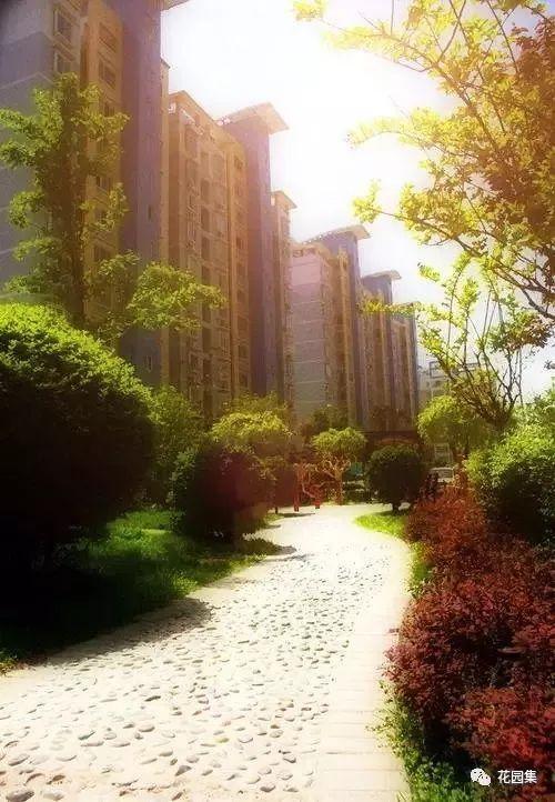 居住区与别墅庭院景观设计的差异_17