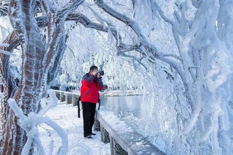 雪景大合集,看看你最喜欢哪里?_20