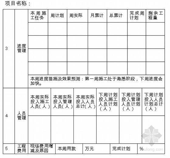 工程施工周报(模板 6页)