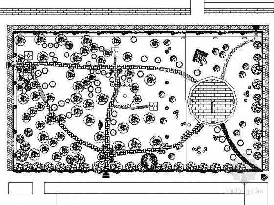 某校园公共绿地景观设计