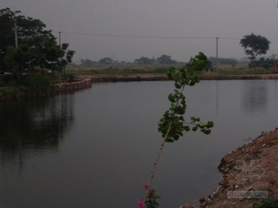 水环境综合整治工程可行性研究报告