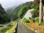 光之隧道,日本 / MAD