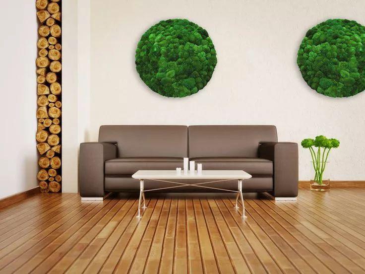 """墙上""""种""""植物,竟如此好看?_11"""