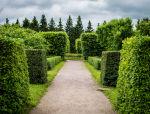景观植物配置图,植物配置模板,园林植物配置