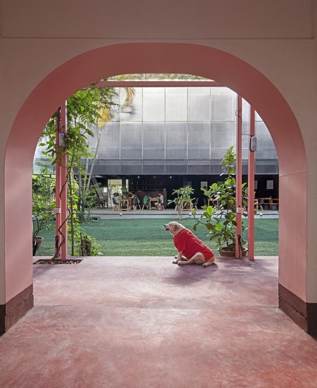 Bangalore庭院,印度/M9DesignStudio_2