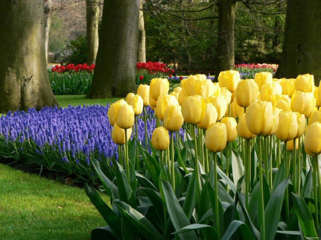 外国的园林艺术一定要看!_19