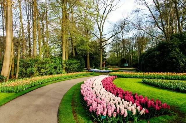 世界最成功的农业主题公园——荷兰库肯霍夫公园