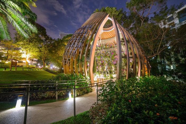 新加坡香格里拉酒店的兰花装置