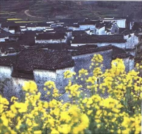 干货·中国古建筑的遗产_54