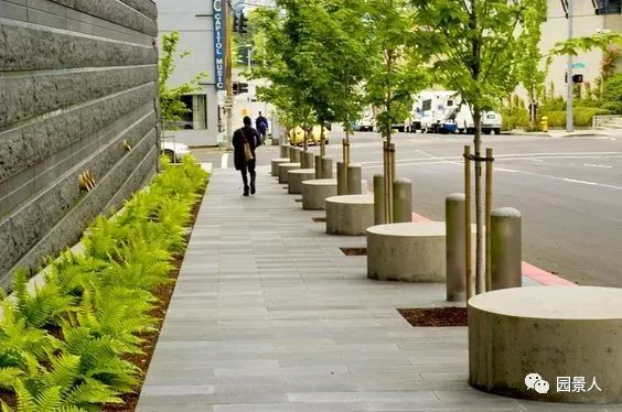 城市干道植物配置,实用干货不得不看!_44