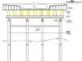 东洲桥重建工程支架拆除方案