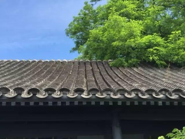中国最美五十家民宿院子_123
