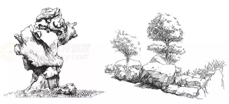 作为景观设计师必须掌握的景观线稿表现_3