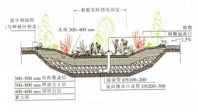 市政道路低影响开发设施设计基本要求(海绵城市)_2