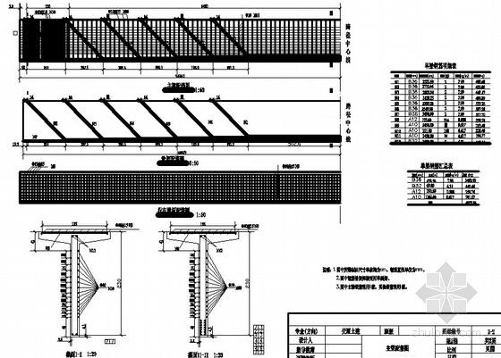 装配式钢筋混凝土T型梁桥35m跨径设计CAD图