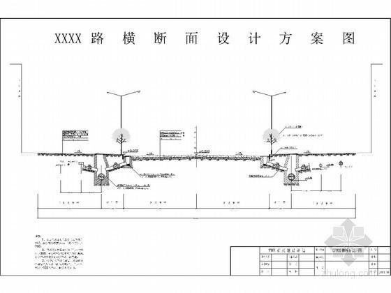 道路横断面设计大样图(30米宽路基)
