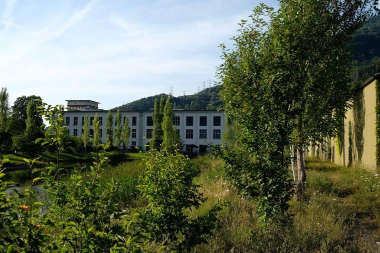 瑞士LowerFactoryPond水系环境修复-6