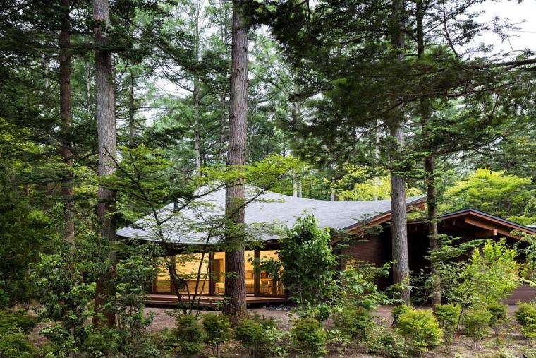 日本密林中的四叶别墅-2