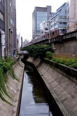 2020东京奥运会最大亮点:涩谷超大级站城一体化开发项目_53