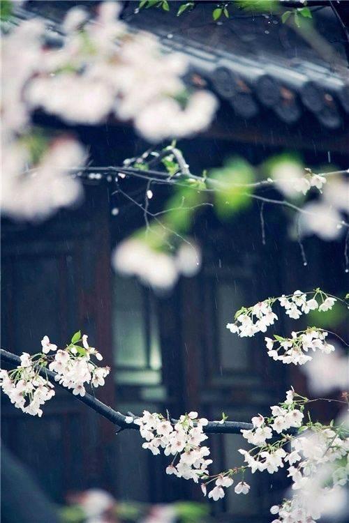 花窗之美,穿越千年而来_11