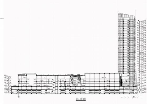 现代风格超高层甲级塔楼式办公楼建筑剖面图