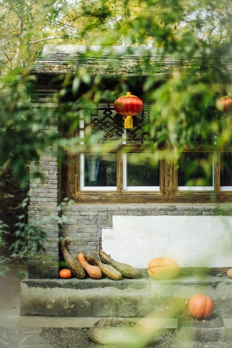 这里的秋天会画画,住进获国际大奖的最美民宿:姥姥家_11