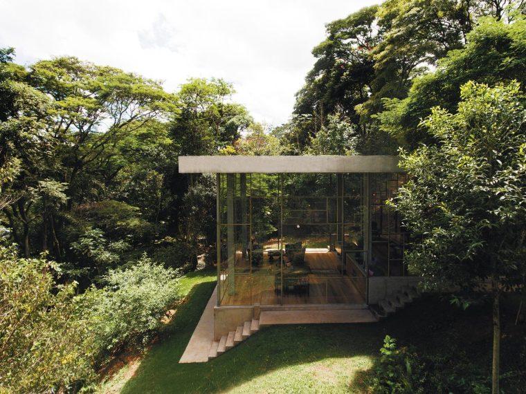 巴西树林中的玻璃图书馆