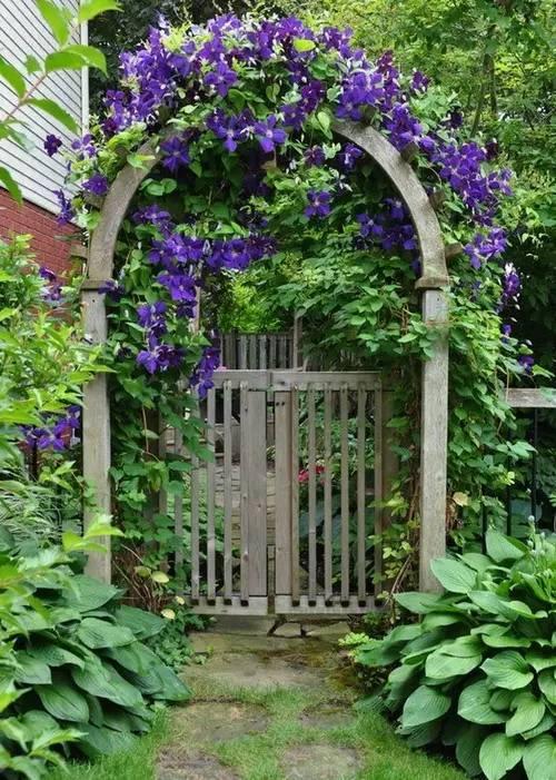有个庭院,将是今生最大的幸福_34