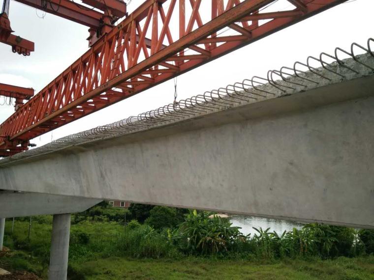 广东+从大桥的开始到最后_11