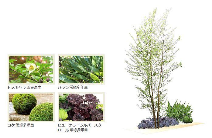 清流般的日式小庭院~